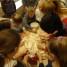大手小手齐动手,亲情友情同窗情——拉大孔院开展饺子文化体验活动