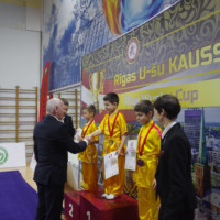 The 8th Riga Wushu Cup in Latvia Was Successfully Held